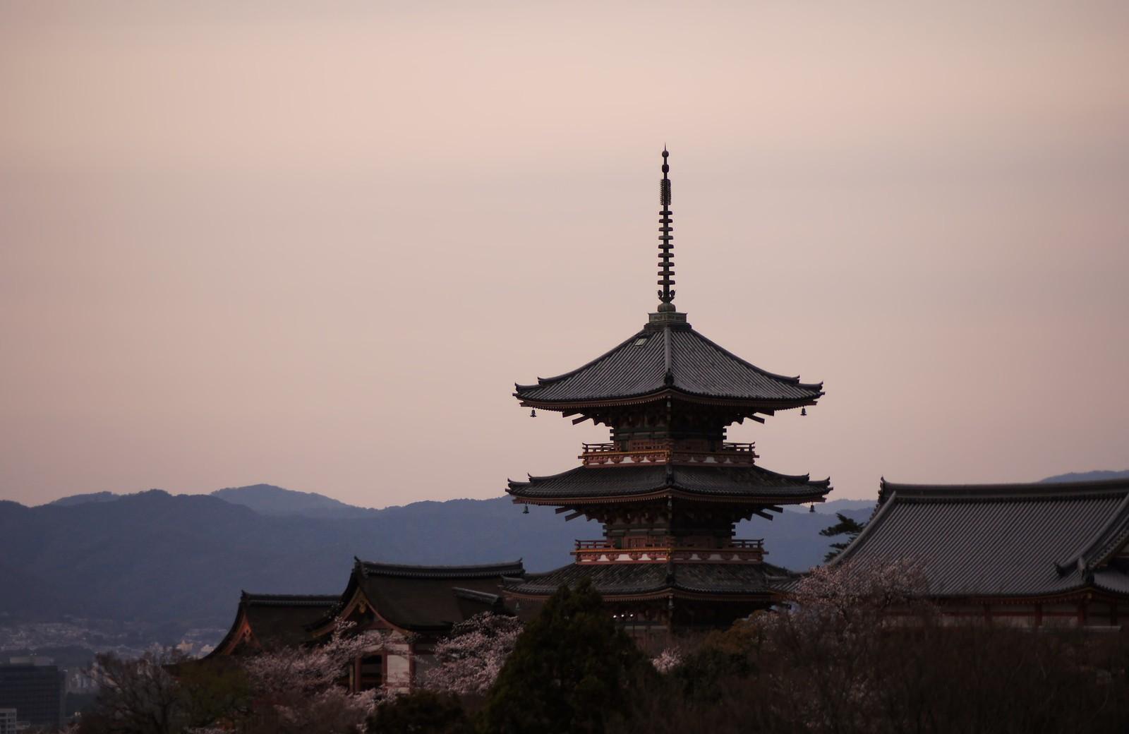 【京都デート】おしゃれに食事が楽しめる隠れ家居酒屋~四条&河原町編~